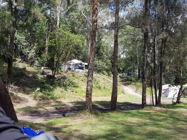 Bielany Camp Colo River (CG) - Free Range Camping Directory