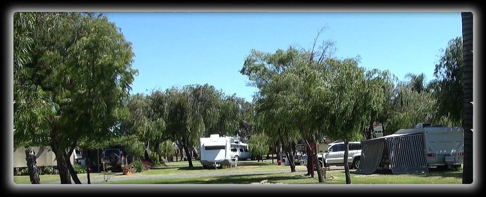 BIG4-Bunbury Glade Caravan Park (CP) - Free Range Camping