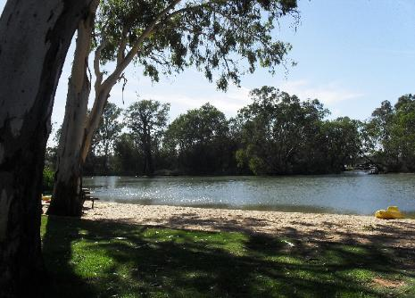 Willow Bend Caravan Park - Wentworth (CP) - Free Range