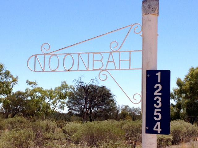 Noonbah-Station-Campground1.jpg