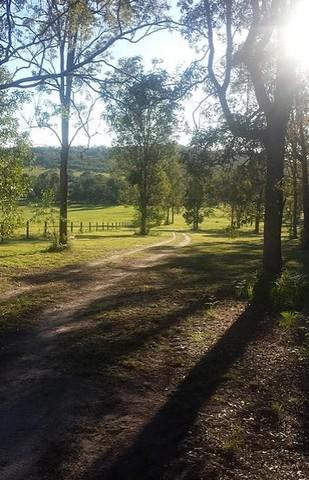 Kookaburras On Curra Country Camping (CG) - Free Range
