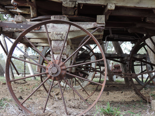 Meadowbank-Museum-and-Farmstay-Camp-Site-–-Roma-Horse-Drawn-Vehicle
