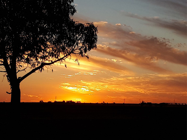 Meadowbank-Museum-and-Farmstay-Camp-Site-–-Roma-Sunset
